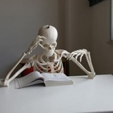 skeleton-reading-290x290_thumb.jpg